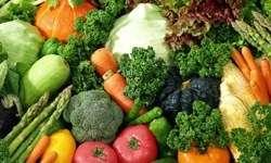 bağışıklık sistemi ve beslenme